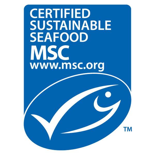 msc-logo-600
